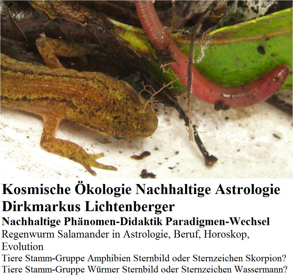 kosmische-oekologie-nachhaltige-astrologie-salamander-skorpion-regenwurm-wassermann-dirkmarkus-lichtenberger