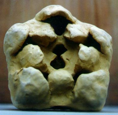 pentagon-pentagramm-synchronizitaet-antirrhinum-bluten-knospe